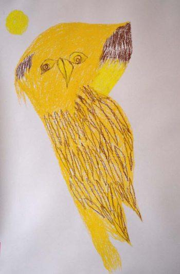 OwlJerry