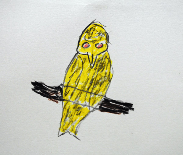 3-yellow-bird